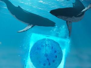 Il respiro della balena gioca con l'orologio del tempo.