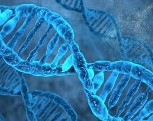 DNA e Big Data