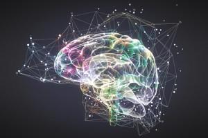 idee-cervello