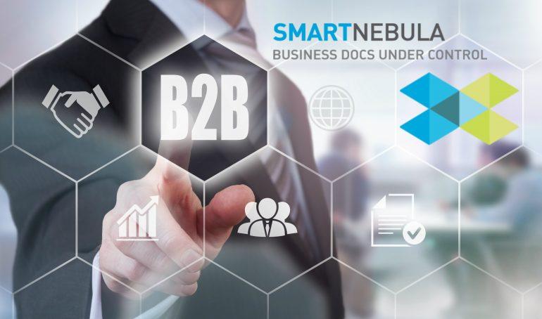 Smartnebula B2B