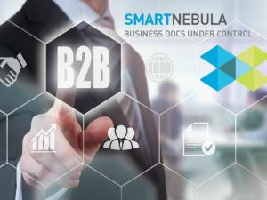 L'evoluzione dei Portali B2B: sicurezza ed efficienza con il nuovo software SmartNebula.