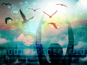 """Leggerezza e interoperabilità: tentare il """"volo"""" della semplificazione attraverso una nuova relazione tra l'Uomo e la Macchina."""