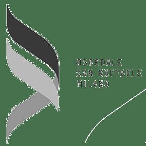Maps Group Clienti Ospedale San Raffaele Milano