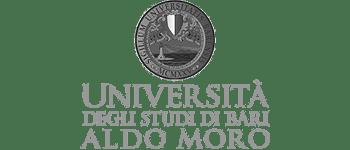 MapsGroup-clienti-Università-Bari__grey