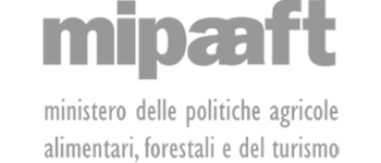 MapsGroup-clienti-mipaaft_grey