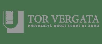 mapsgroup_universita_di_rooma_tor_vergata_grey